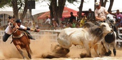 1º Seminário avançado de responsabilidade técnica em esportes equestres